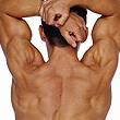 chiropractor carmel